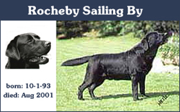 CH SH Rocheby Sailing By